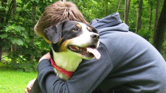 Therapiehund der Tagesklink fuer Kinder- und Jugendpsychiatrie